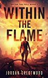 Bargain eBook - Within the Flame  After the Fall Book 1